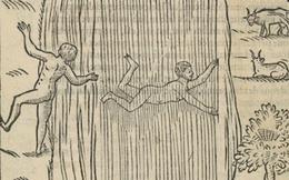 Cuốn sách dạy bơi của người Anh từ thế kỷ 16 có vô số kiến thức bổ ích, giúp con người sinh tồn khi xuống nước