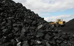 Than đá và quặng khoáng sản dẫn đầu mức tăng trưởng xuất khẩu