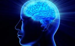 Hãy bảo vệ sức khỏe tim mạch ở độ tuổi 20 để ngăn ngừa teo não ở độ tuổi 40