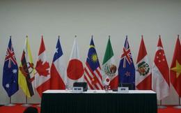 Tuyên bố chung của các Bộ trưởng phụ trách Kinh tế về TPP-11