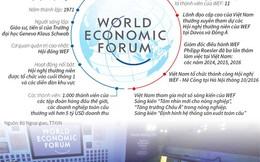 [Infographics] Quan hệ giữa Việt Nam và Diễn đàn Kinh tế Thế giới