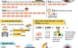 [Infographics] Giá thịt lợn giảm xuống mức thấp nhất từ trước đến nay