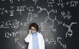Theo Đại học Harvard: Có 7 hình thức khác nhau của trí tuệ, bạn thông minh theo kiểu nào?