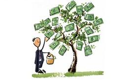 Môi trường Sonadezi chốt quyền trả cổ tức bằng tiền, tỷ lệ 8% cho giai đoạn 14 tháng