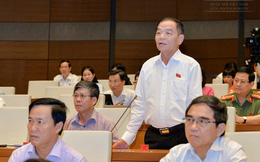 Ban hành nghị quyết riêng về tách dự án sân bay Long Thành