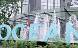 Ocean Group báo lãi hơn 8 tỷ đồng trong quý 1/2017 - tăng 87%, cổ phiếu được trở lại giao dịch toàn thời gian
