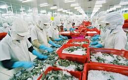 Vua tôm Minh Phú tiếp tục đà phục hồi, đạt 558 tỷ đồng lợi nhuận sau 10 tháng