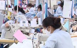 Vì sao năng suất lao động của Việt Nam thấp?