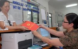 TP.HCM: Hàng ngàn nhà đất 'giấy tay' được cấp chủ quyền
