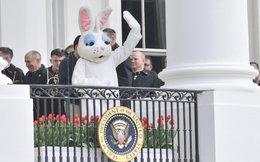 Người phụ nữ bí ẩn phía sau những bữa đại tiệc ở Nhà Trắng