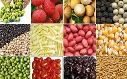 Kim ngạch xuất khẩu nhiều mặt hàng nông sản tăng kỷ lục