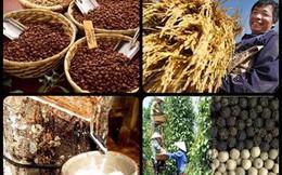 """Những nhóm hàng nông sản xuất khẩu """"tỷ đô"""" của Việt Nam"""