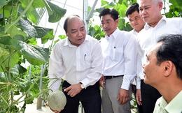 Thủ tướng: Chính phủ luôn ủng hộ cách làm nông nghiệp công nghệ cao