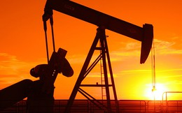 Giá dầu thô quay đầu tăng