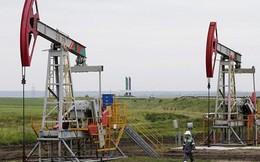 Triển vọng giá dầu: Thị trường theo dõi sát sao trữ lượng và sản lượng dầu thô Mỹ