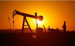Giá dầu mất mốc 50 USD do sản lượng dầu thô OPEC bất ngờ tăng