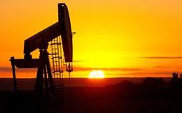 Giá dầu giảm sâu do cơn bão Harvey