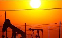 Giá dầu thô giảm sau khi cao nhất trong vòng 4 tuần