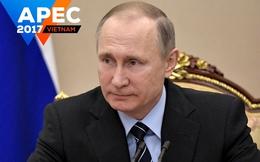 5 điều có thể bạn chưa biết về Tổng thống Nga Vladimir Putin