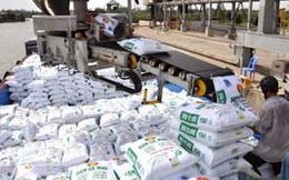 Việt Nam chi hơn 530 triệu USD nhập khẩu phân bón từ Trung Quốc và Nga