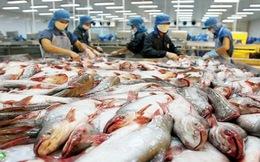 Nửa đầu năm, doanh nghiệp thủy sản doanh thu thấp, lãi giảm