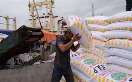 Chính thức bỏ chế độ cấp phép nhập khẩu tự động phân bón