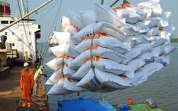 Thận trọng bỏ thầu 250.000 tấn gạo tại Philippines