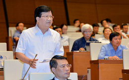 Phó Thủ tướng Trịnh Đình Dũng giải trình một số vấn đề về sản xuất nông nghiệp