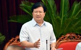 Phó Thủ tướng nêu nguyên nhân chính khiến chăn nuôi khó khăn