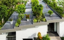 2 ngôi nhà Việt Nam lọt top 10 ngôi nhà có 'vườn trên mái' đẹp nhất thế giới