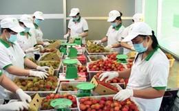 Tiêu chuẩn hàng hóa của Việt Nam vẫn thấp xa so với thế giới