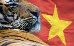 Bloomberg: Vì sao không được nhận các vốn vay ưu đãi lại là tín hiệu tốt với Việt Nam?