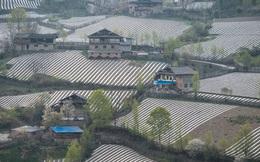"""Trung Quốc đang đối mặt với nguy cơ """"ô nhiễm trắng"""""""