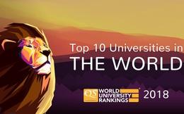 Các trường Đại học trên thế giới được xếp hạng dựa trên tiêu chí nào?