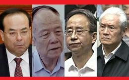 """Trung Quốc bớt """"đả hổ"""", tăng """"diệt ruồi""""?"""