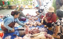 """Tiền Giang: Người chăn nuôi ồ ạt bán tháo lợn để tự """"cứu mình"""""""