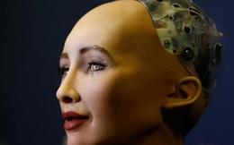Vừa nhận quyền công dân, nữ robot Sophia đã phạm pháp!
