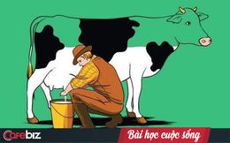 Một con bò và bài học thức tỉnh đời người: Ai cũng cần biết để sống ý nghĩa hơn