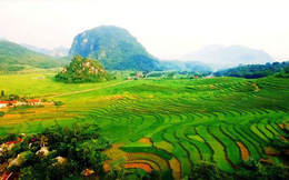 Năm 2020, Thanh Hóa đón 42,3 triệu lượt khách du lịch