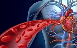 Hỏng mạch máu vì hút thuốc, nguy cơ đột quỵ tăng