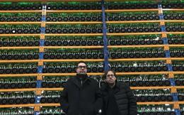 """Ghé thăm Bitfarms - """"nông trại"""" cày tiền mã hóa khổng lồ tại Canada"""