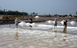 Muối Ninh Thuận được giá nhưng mất mùa