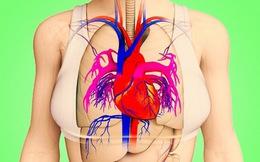 Trước khi xảy ra đau tim tầm 1 tháng thường có 8 dấu hiệu sau: Bạn cần biết mà phòng tránh
