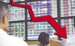 Cổ phiếu HQC rơi không ngừng, Tập đoàn Hoàng Quân tính mua vào 50 triệu cổ phiếu