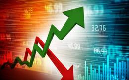 Sotrans (STG): Cả năm lãi 160 tỷ đồng, gấp 4 lần chỉ tiêu lợi nhuận cả năm