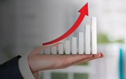 ATA, VGC, PHH, PXL, TS4, XMD, DRI, WSB, QPH: Thông tin giao dịch lượng lớn cổ phiếu