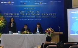 Tháng 7, quỹ đầu tư cổ phiếu triển vọng Bảo Việt (BVPF) đã rót thêm tiền vào cổ phiếu ngành cao su, dược, vận tải...