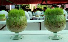 Mekong Capital đã thoái hết vốn tại Lộc Trời sau gần 9 năm đầu tư