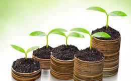 QNS, BVG, MDG, HDG, CIG, PVB, PVC: Thông tin giao dịch lượng lớn cổ phiếu