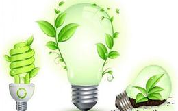 Bóng đèn Điện Quang (DQC): Giá mua cổ phiếu quỹ dự kiến không quá 45.000 đồng/cổ phiếu